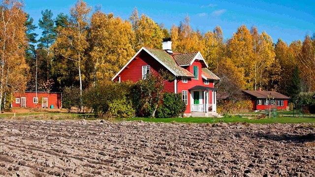 Как приватизировать дом в деревне на приватизированном дачном участке: какие документы нужны, с чего начать регистрацию земельного участка и дачи, сколько стоит, можно ли оформить часть (долю) частного жилья в сельской местности?