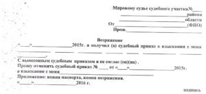Возражение на судебный приказ о взыскании задолженности по ЖКХ: образец искового заявления на отмену списания суммы долга